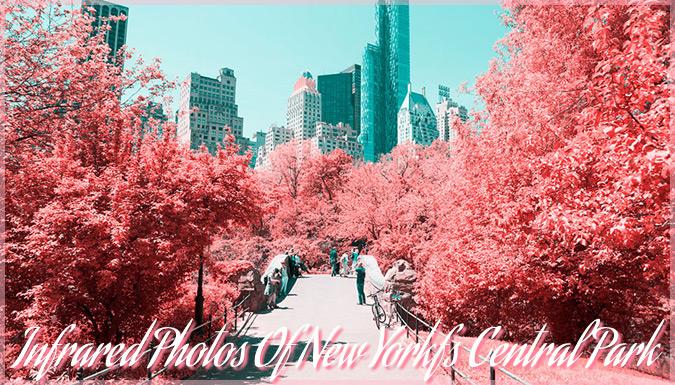 ニューヨークのセントラル・パークを赤外フィルムで撮影した美しい写真集
