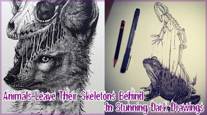 動物の皮と骨と臓器を描いた美しくもダークなイラスト作品