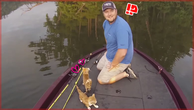 ボートで釣りをしていた2人が釣ったのは可愛い子猫ちゃん!?