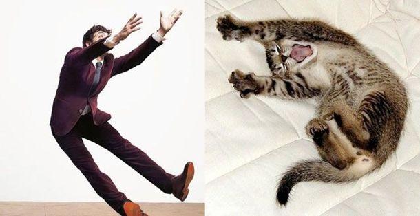 1384788360_cats_vs_models_18