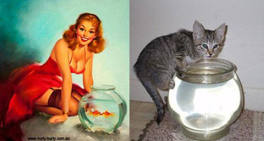 cats-model-pinup-girls-5%255B2%255D