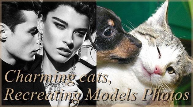 女性も男性モデルも完璧に再現するチャーミングなネコ