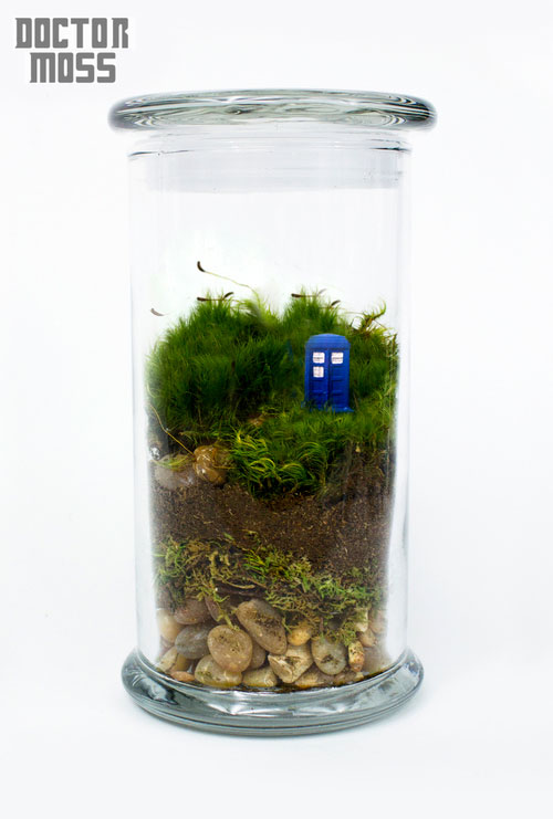 geek_moss_terrariums_03
