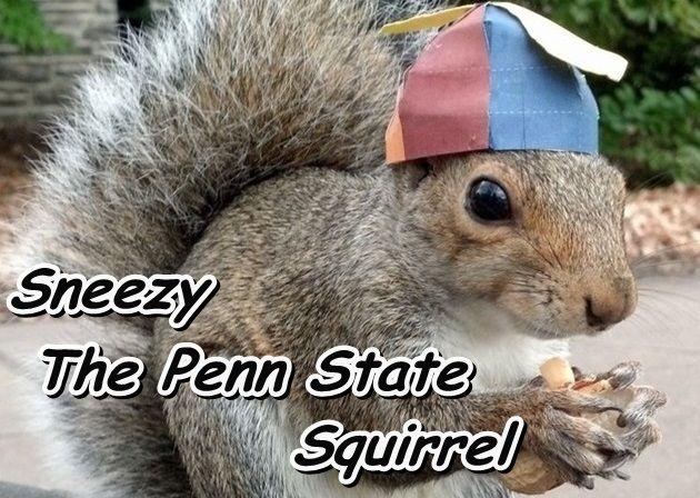 おしゃれな帽子のリスくん!ペンシルベニア州立大学に住み着く人気者