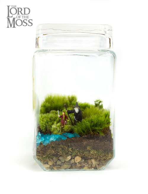 geek_moss_terrariums_09