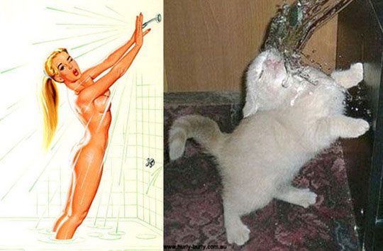 cats-model-pinup-girls-14%255B2%255D