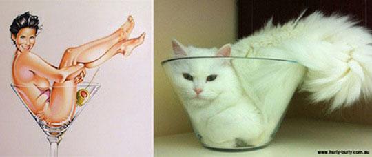 cats-model-pinup-girls-2%255B2%255D