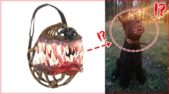 ハロウィンの夜にピッタリの怖すぎる犬用マズル!犬が狼に大変身!?