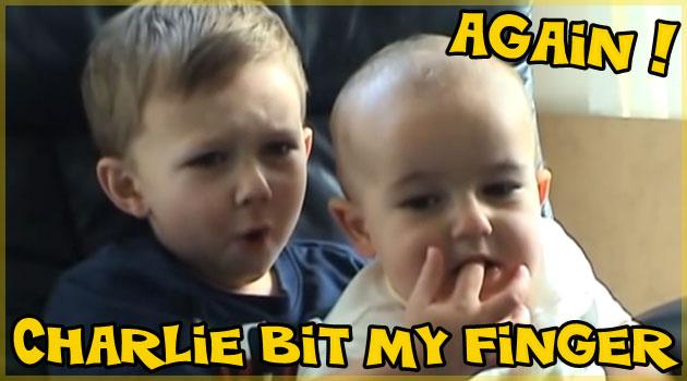 チャーリーは僕の指を噛んだ!ほのぼの癒し系動画をもう一度