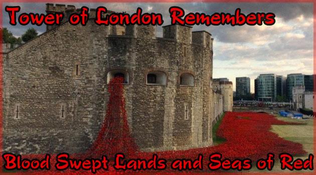 ロンドン塔から広がる88万本の赤いセラミックフラワー