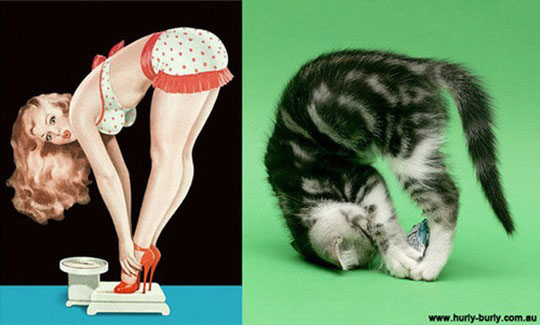 cats-model-pinup-girls-4%255B2%255D