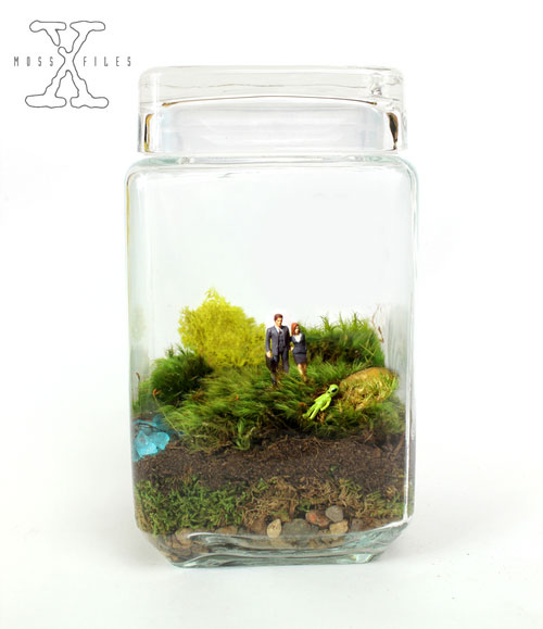 geek_moss_terrariums_10