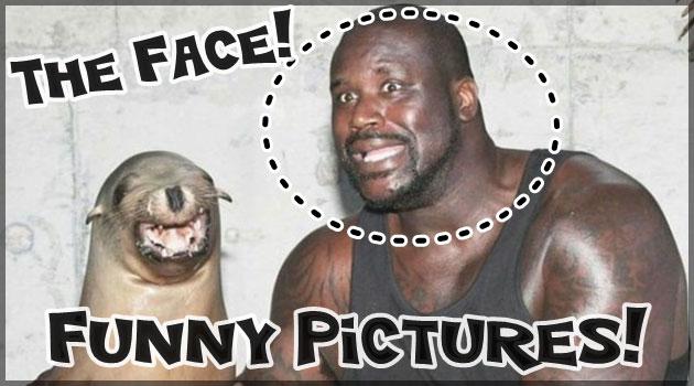 面白い瞬間をとらえた笑顔のための25枚の写真集!
