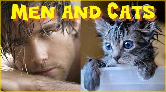 ネコを擬人化すると絶対こうなる!といわんばかりの写真集