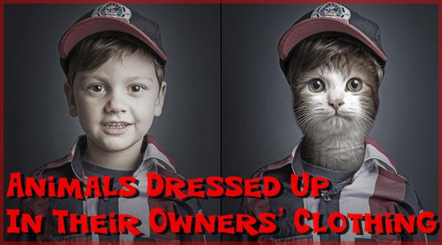 飼い主の服装をペットに着せて、主人とペットを比較した写真集