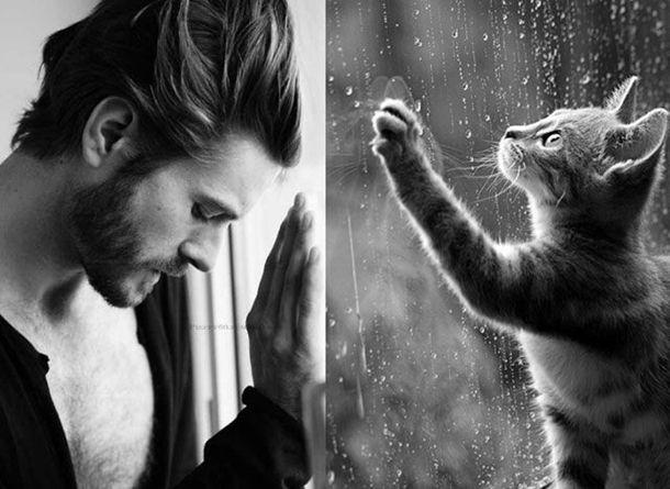 1384788314_cats_vs_models_25