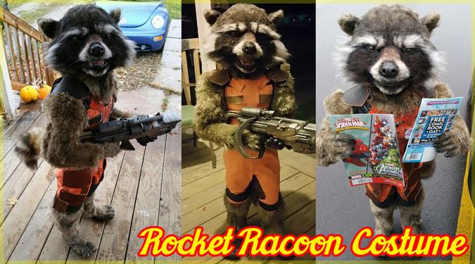 息子のために超リアルなロケットラクーンの衣装を作ったお母さん!