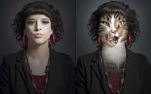cat-natalie_2961549k