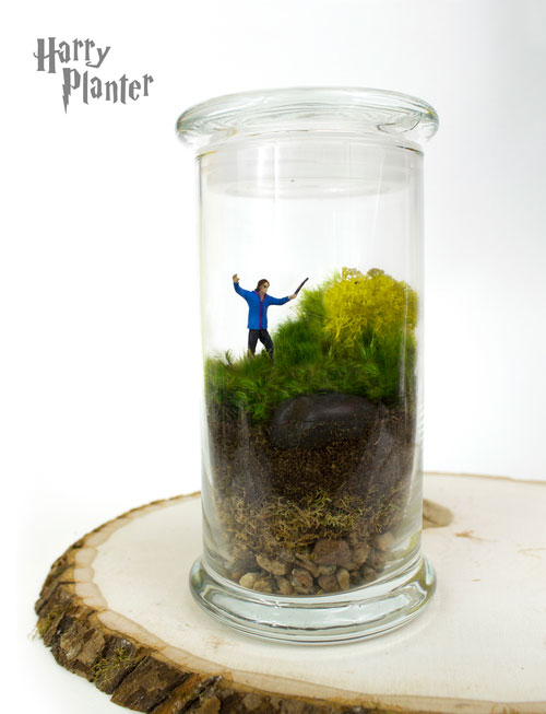 geek_moss_terrariums_06