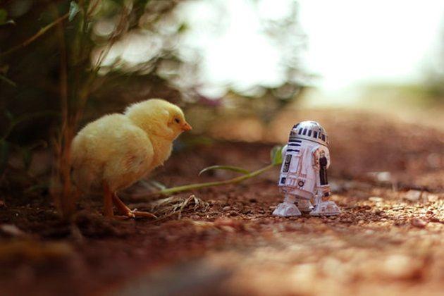 clone-trooper-toys-3