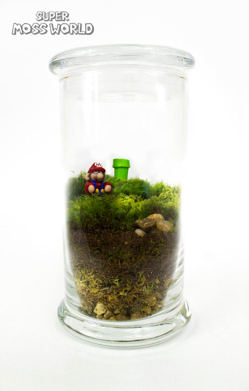 geek_moss_terrariums_11