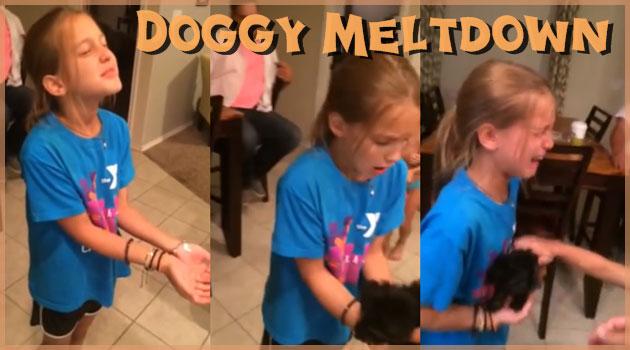 誕生日のサプライズに子犬をプレゼントしたときの少女の反応