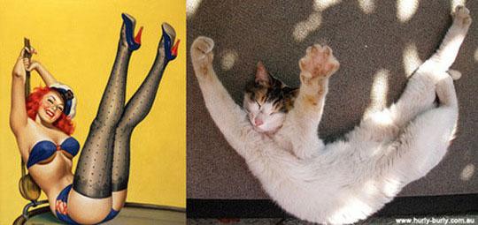 cats-model-pinup-girls-6%255B2%255D