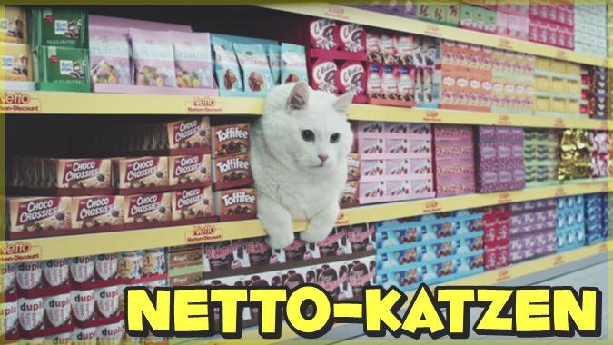 ネコのミームネタを詰め込んだスーパーマーケットのCM映像が話題に!