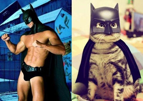 1384788335_cats_vs_models_03