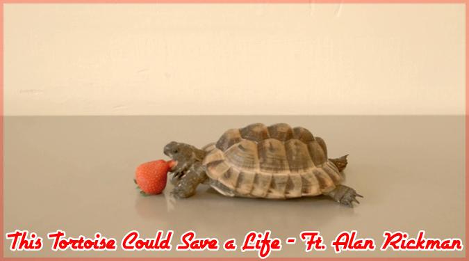 アラン・リックマンの最後の仕事は苺を食べるカメのナレーション
