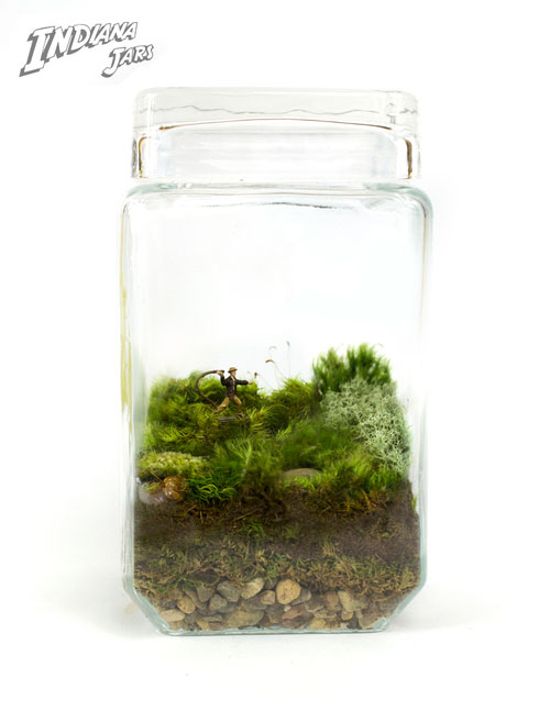 geek_moss_terrariums_07