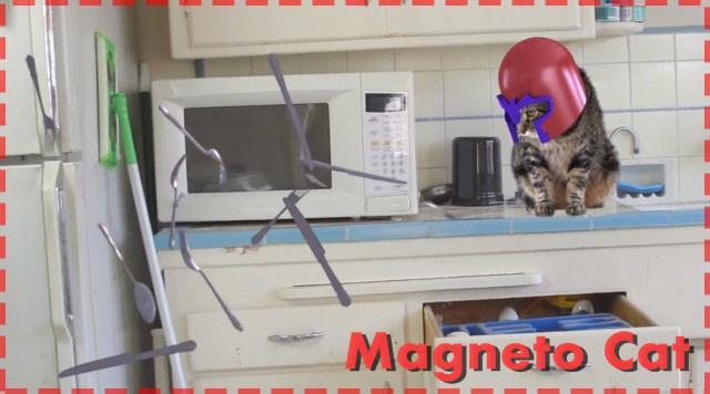 可愛いネコちゃんがX-Menのマグニートになって大暴れ!