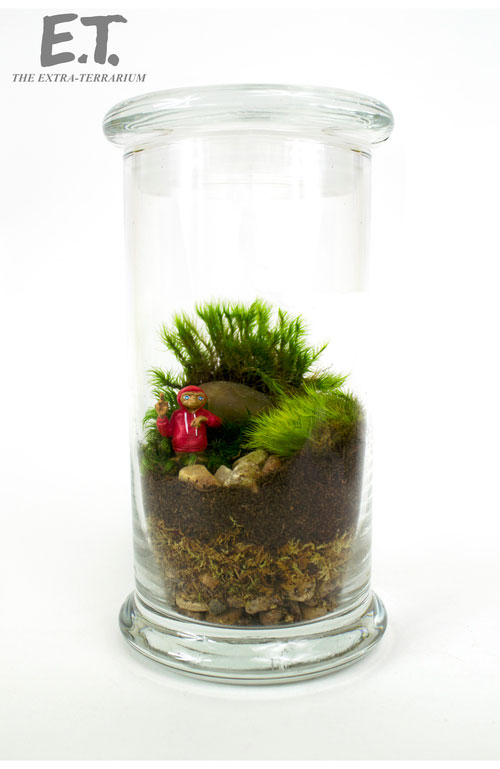 geek_moss_terrariums_05